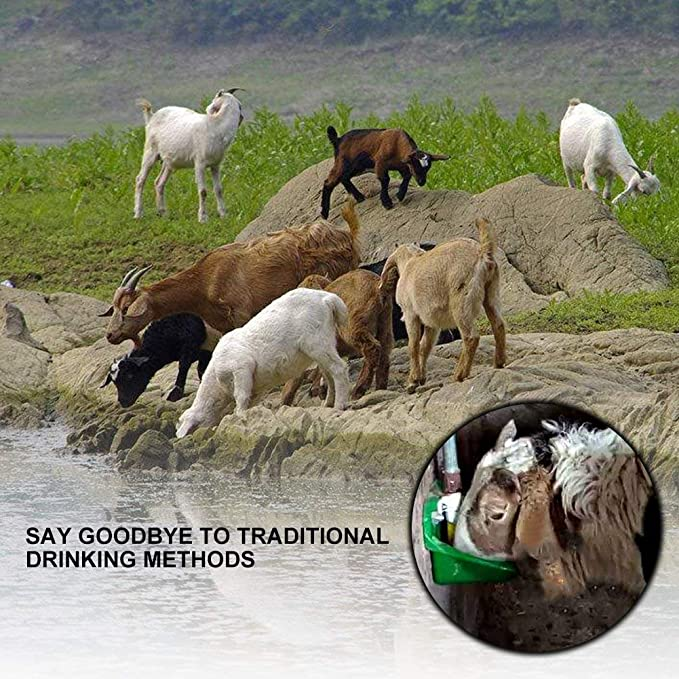 Pssopp Pig Water Bowl Automatic Sheep Pig Waterer Professional Livestock Drinking Cup Farm Drinking Water Supplies for Horses Goats Cows Sheep Dogs