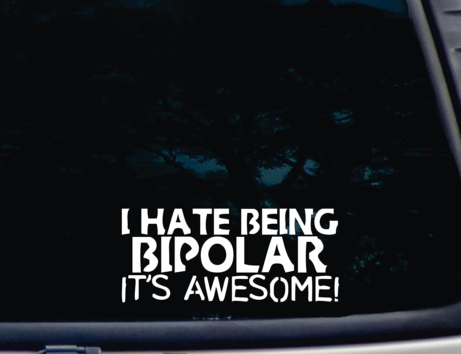 truck tool box 8 x 3 1//2 die cut vinyl decal for window virtually any hard smooth surface car I hate being BIPOLAR Its AWESOME!