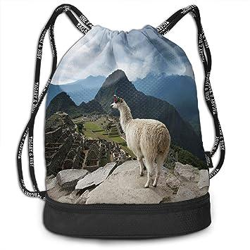 Amazon.com: Cree Magic Llama Mochila con cordón para deporte ...