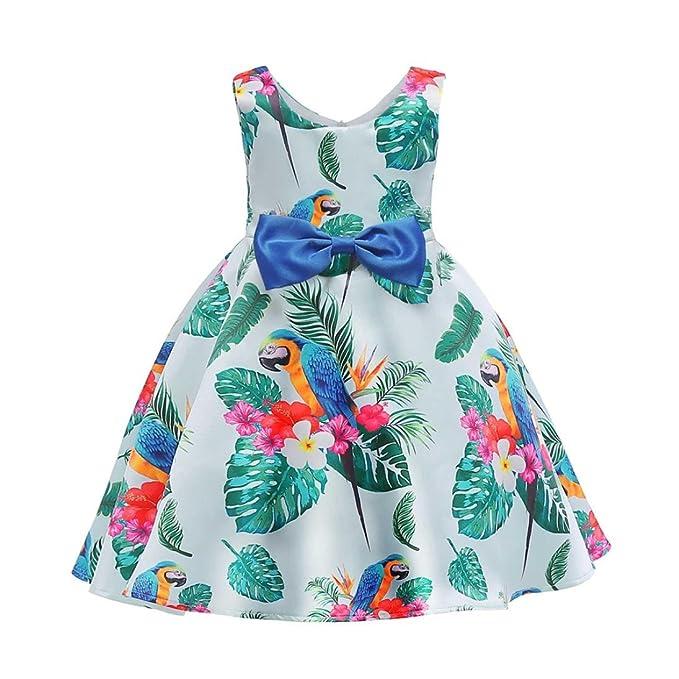 Amazon.com: dinlong bebé niñas ropa vestido de princesa ...