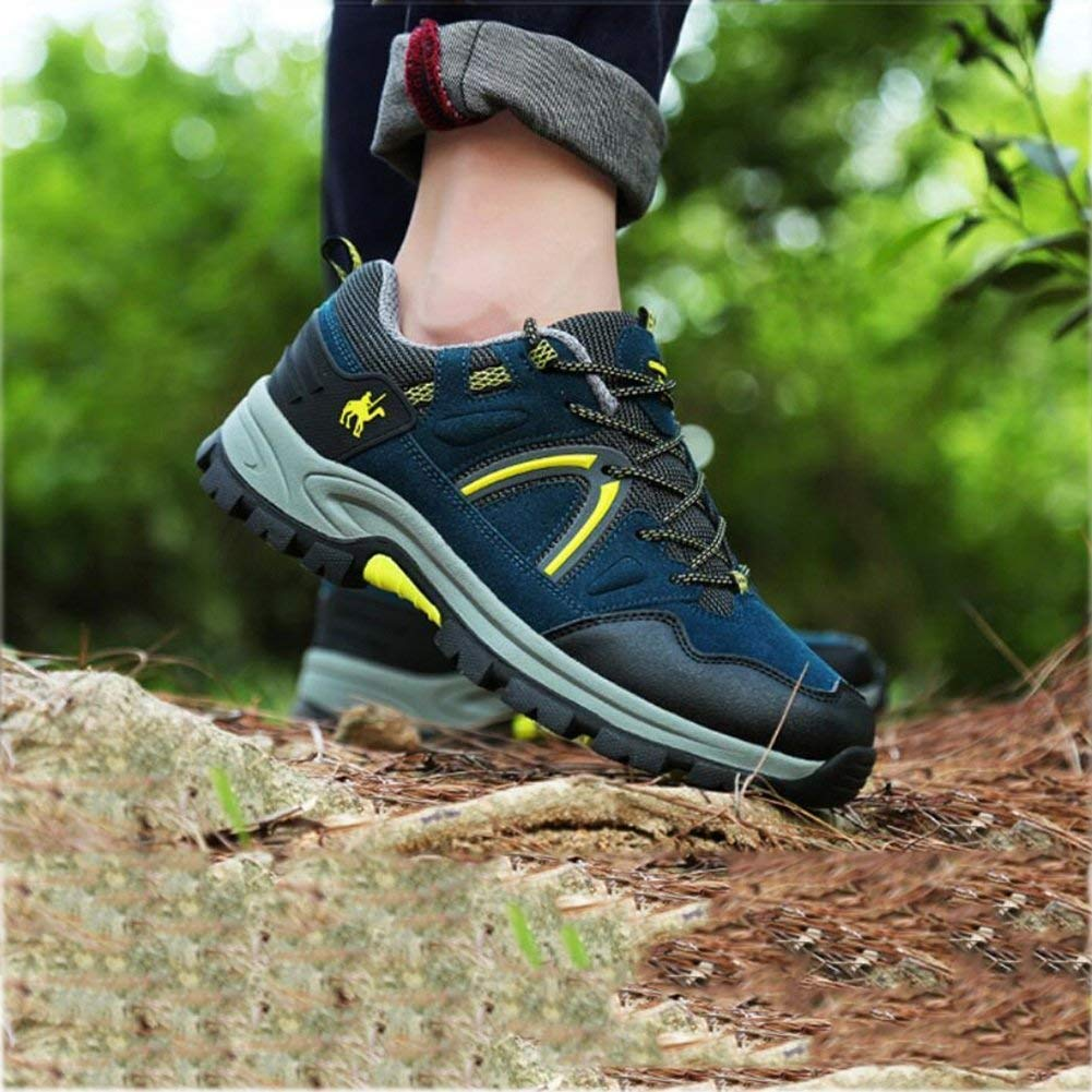 Herren Wanderschuhe Lace-up Low Rise Trail Trail Trail Laufschuhe Outdoor Sports Gym Mesh Atmungsaktive Kletterschuhe Sommer Wanderschuhe Gummi-Sohle Schuhe (Farbe   D Größe   36) (Farbe   B Größe   45) b64ee3