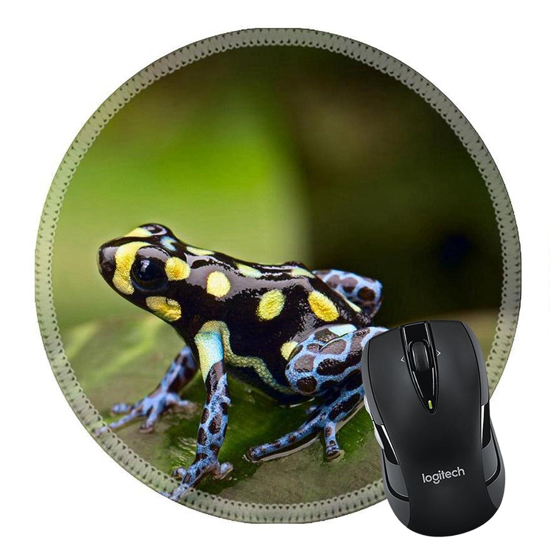 MSD caucho Natural alfombrilla para ratón imagen ID 33982682 Poison Dart Frog de la Tropical Amazon Rain Forest de Perú y Brasil Ranitomeya vanzolinii una ...