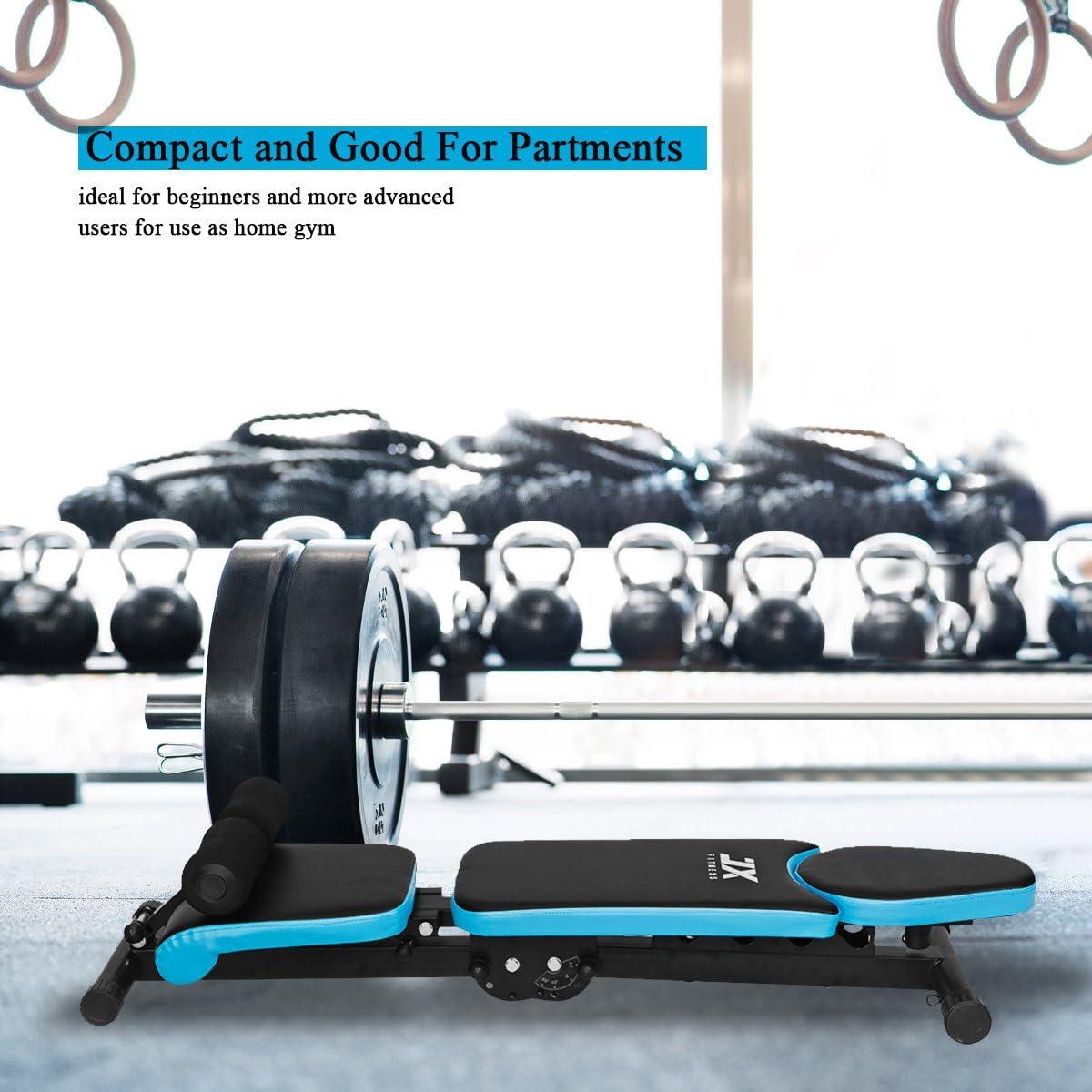 Beinhalterung f/ür Bauchtraining Sit up Bench Weight JX FITNESS Hantelbank Klappbare Multifunktion Training Fitness Bank /Übungsbank Bizepstraining und R/ückentrainer