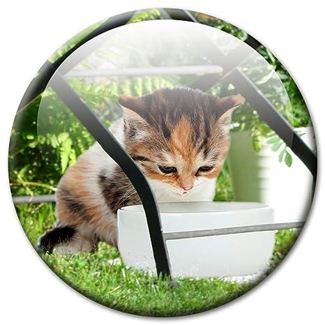 Imán Gato bajo el Jardín Silla 5 cm de diámetro Frigorífico magnético con diseño de gato