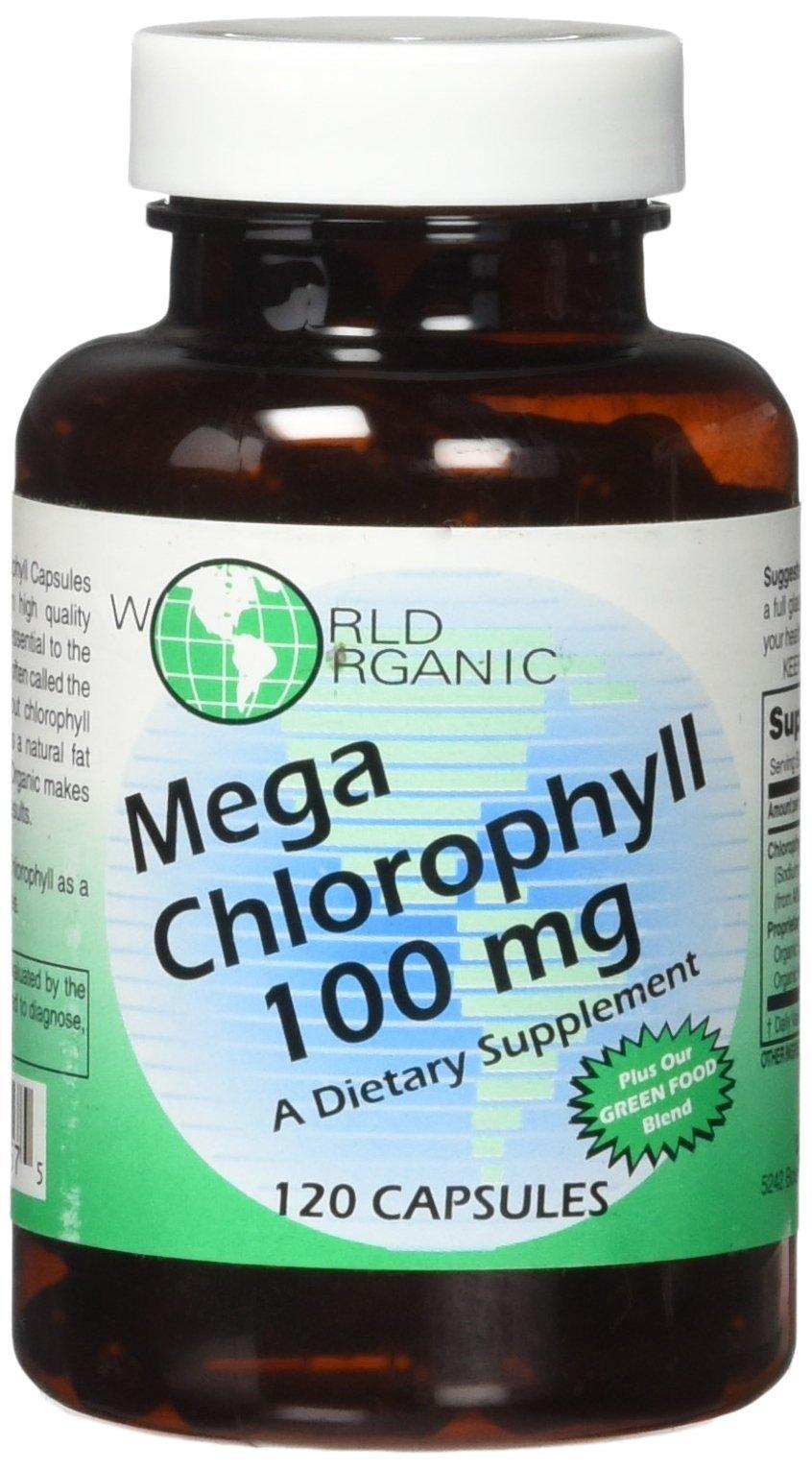 World Organics Chlorophyll Supplement 100 Mg 16 Ounce K Liquid Mega 120 Count