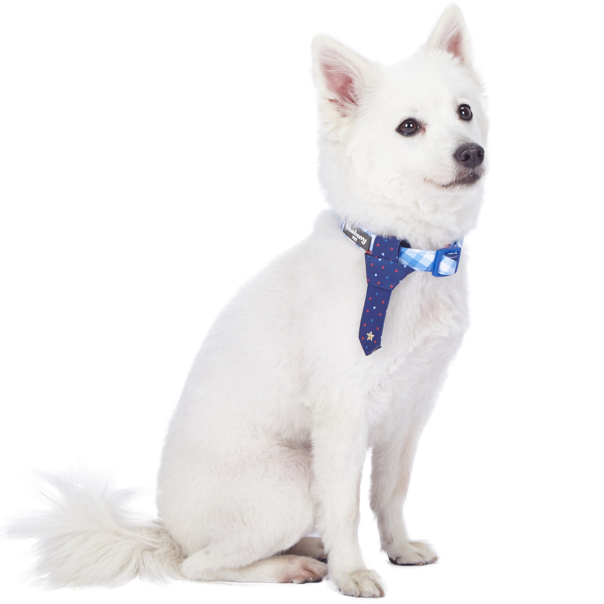Blueberry Pet 4 Patterns Blue Hue Scottish Plaid Style Tie Dog Collar, Small, Neck 12''-16'', Adjustable Collars for Dogs