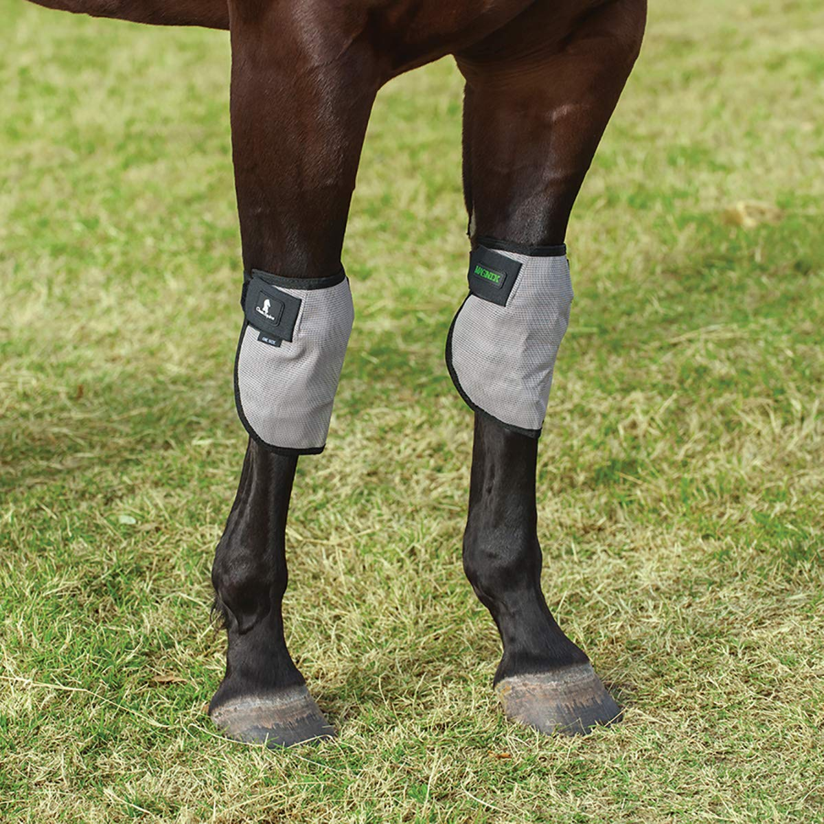 Classic Equine MagNTX Knee Wrap by Classic Equine