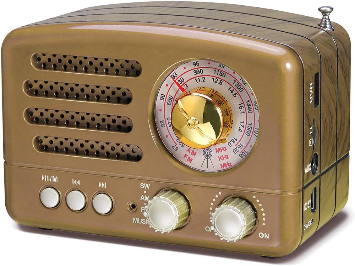 PRUNUS J-160 Radio de Transistor portátil pequeña, Altavoz Bluetooth portatil Radio Retro con batería Recargable de 1800mAh, USB Incorporado, Micro-SD, Entrada AUX (Oro)