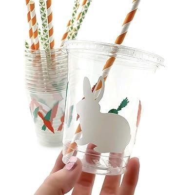 Bunny Rabbit Cups - 12 Set Garden Spring Baby Shower Birthday Party Supplies: Kitchen & Dining