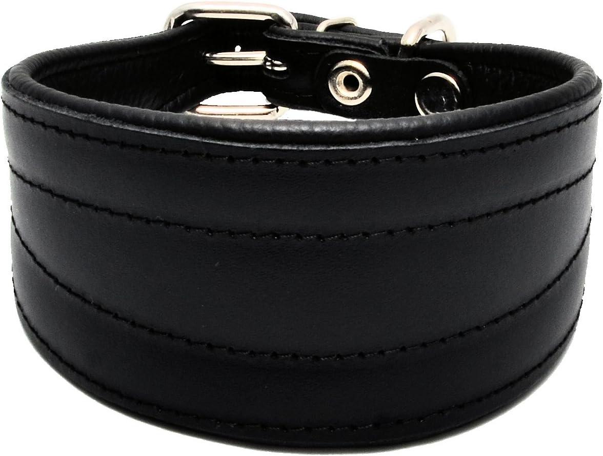 colore nero fatto a mano in vero cuoio per Lurcher//levriero Greyhound//levriero Whippet Collare per cani