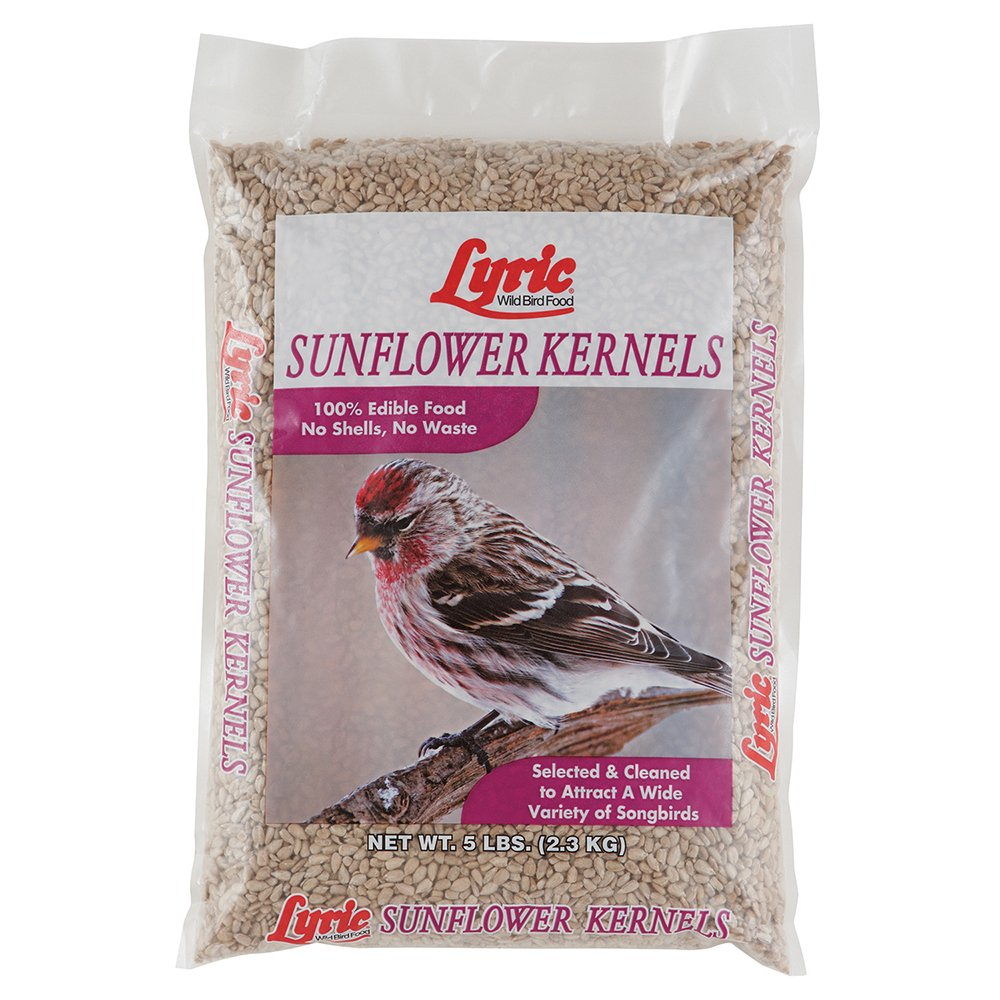 Lyric Sunflower Kernels - 5 lb. Bag by Lyric (Image #1)