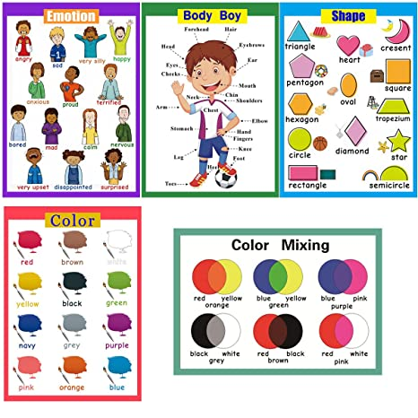 Amazon.com : 5 Pieces Laminated Educational Preschool Posters for ...