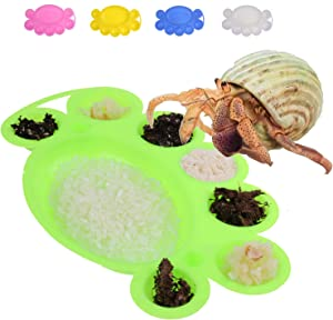 YUYUSO 5 Pack Hermit Crab Food Dish Plastic Feeding Tray Bowl with 8 Compartments to Separate Individual Foods and Better Find Out