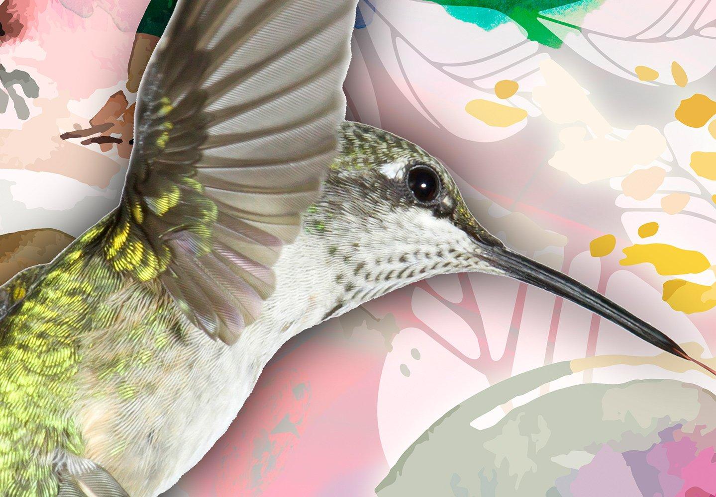 murando Papier peint intiss/é Fleurs Aquarelle 250x175 cm D/écoration Murale XXL Poster Tableaux Muraux Tapisserie Photo Trompe loeil Colibri en couleurs g-C-0073-a-b