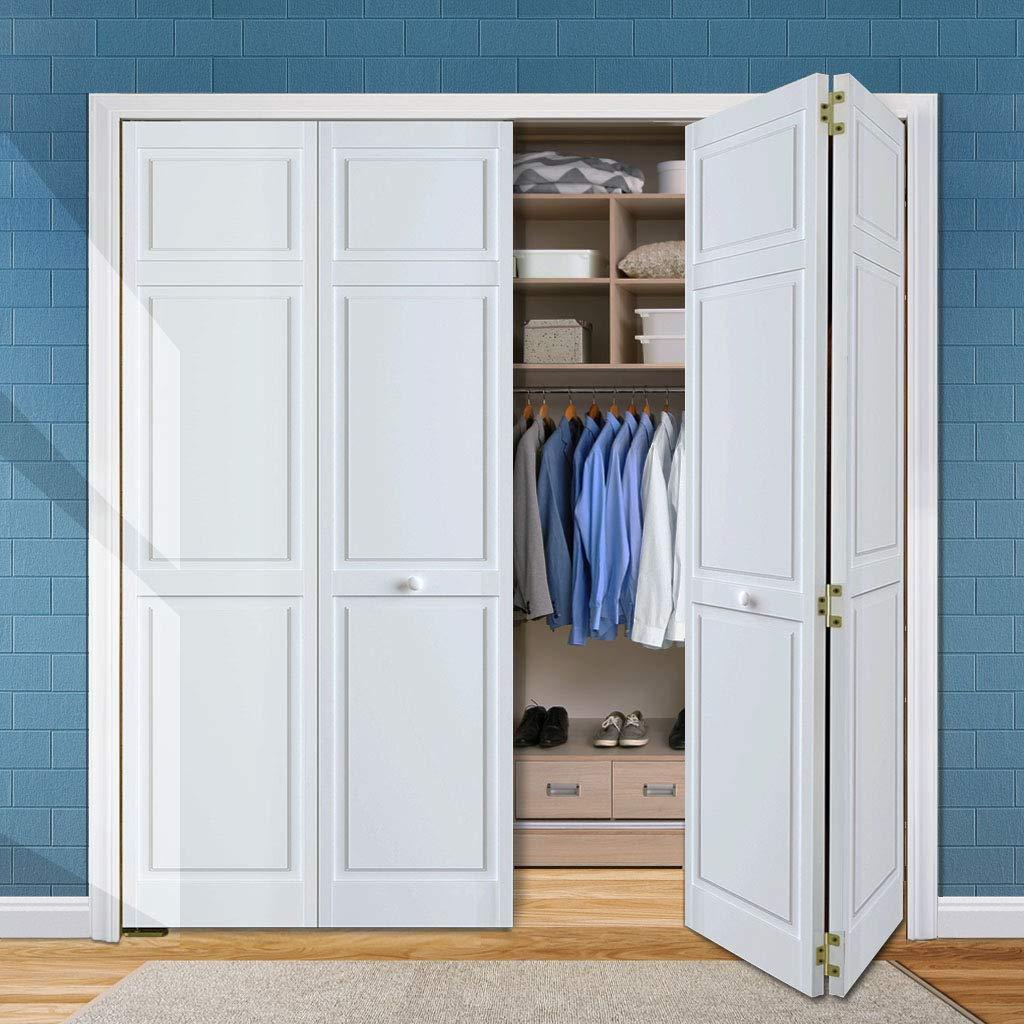 Snavely International Closet Door, Bi-fold, 6-panel Style Primed White