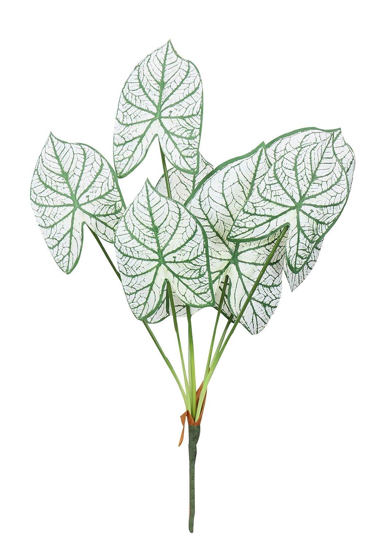 Duovlo 7枝 25.5インチ 人工トロピカルモンステラ ヤシの木 葉 植物 ハワイアンサファリパーティー ジャングルビーチ パーティー ウェディングデコレーション 1パック Alocasia Macrorrhiza White B07MTX3FVN  Alocasia Macrorrhiza White