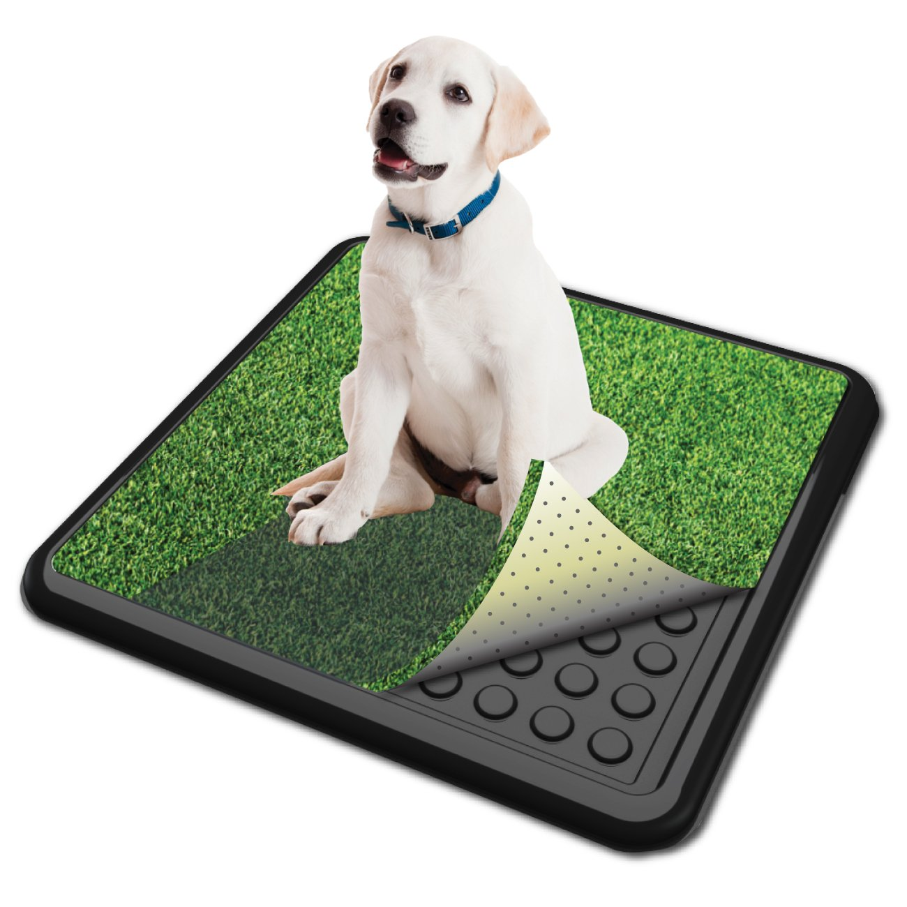 Small 20\ PoochPads Indoor Turf Dog Potty, Small 20  x 20