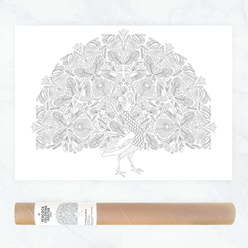Amazon Com Boho Peacock Coloring Poster Or Large Adult