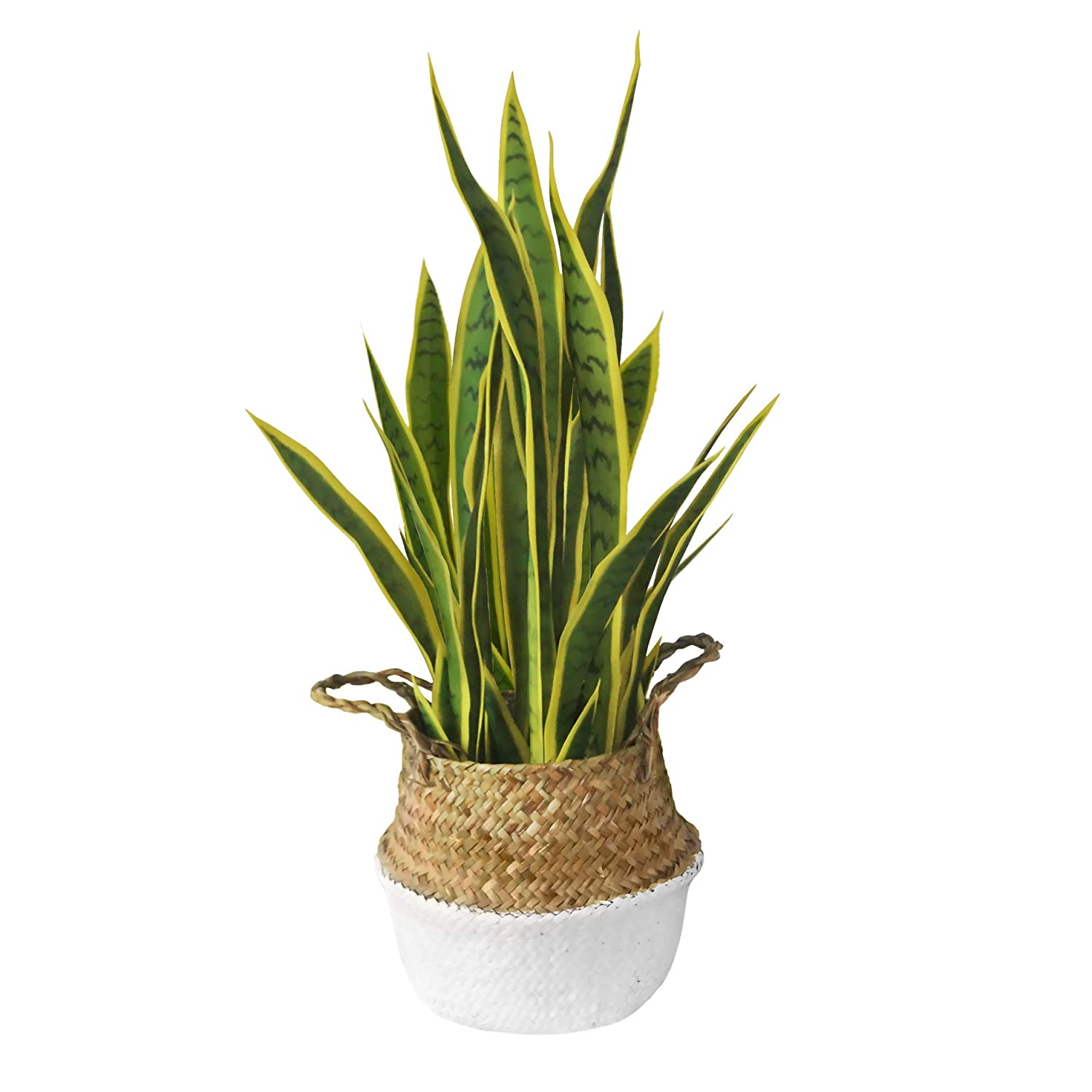 Artificial Plant with Woven Basket | Fake Plant in Seagrass Handmade Planter | Luxury Indoor Plant with Tall Yellow Leaves and Decorative Boho Chic Style | Ideal Housewarming or Office Gift, 27 Inches