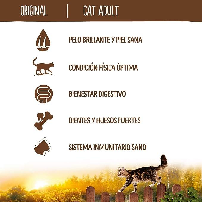 True Instinct Original - Natures Variety - Pienso para Gatos con Pollo - 1,25kg