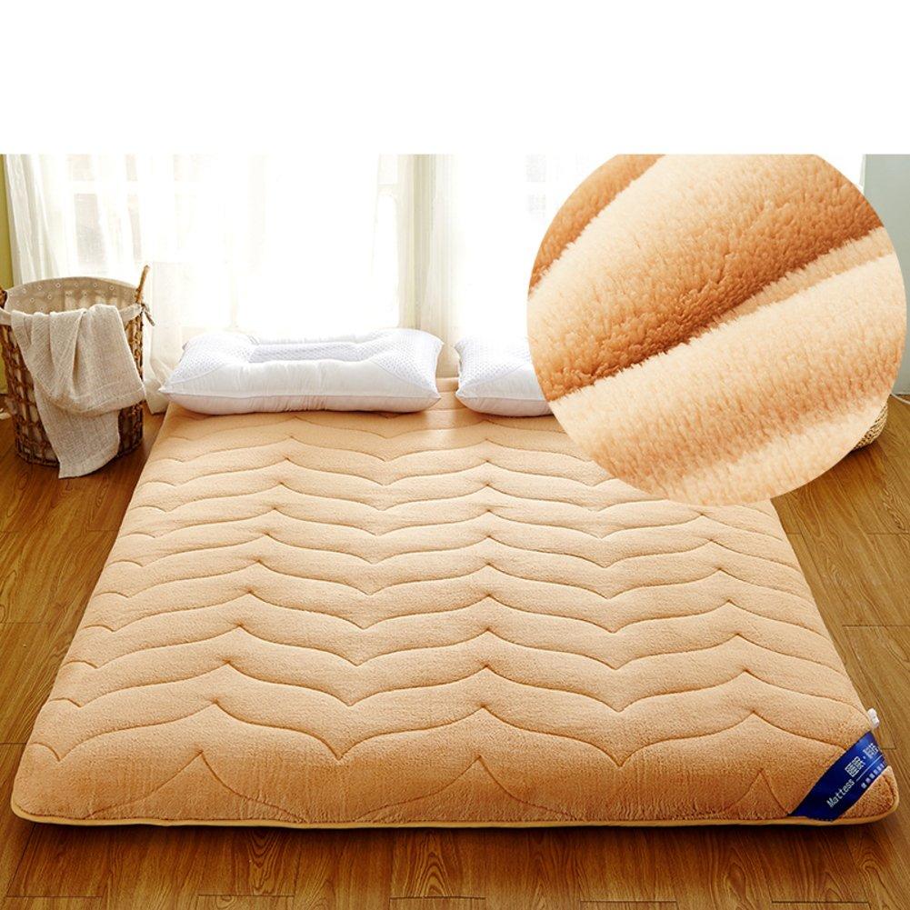 DHWJ WCCT Tatami mattress,Double bed mat,Folding mat-E 180x200cm(71x79inch)