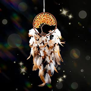 QWDLID Dream Catcher Wall Decor Handmade Dreamcatchers with Crystals Traditional Native American Feather Dream Catchers for Bedroom Wall Hanging Home Decorations