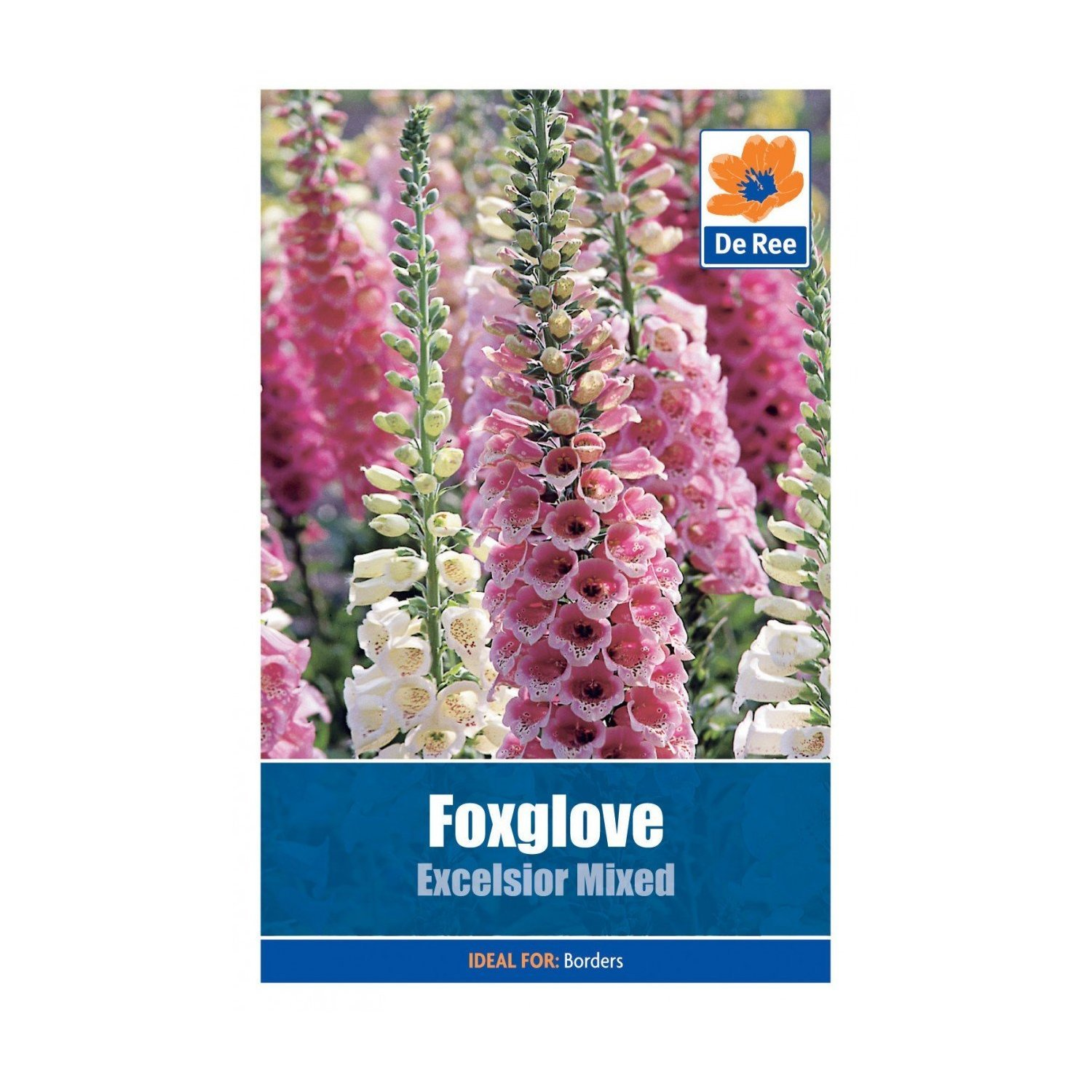 Foxglove Excelsior Mixed Seeds