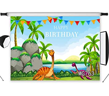 Amazon.com: LB Fondo de fiesta de cumpleaños, tela, tela ...