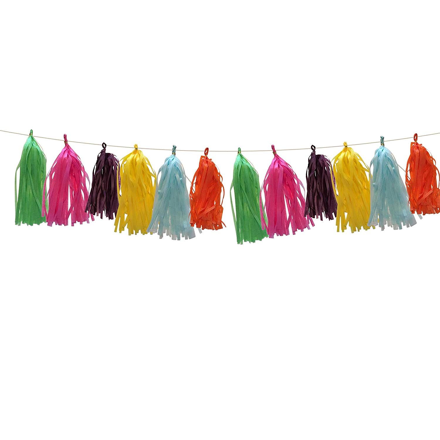 Purple 25 Pcs Blue Fiesta Tissue Tassel Banner in Green Yellow Bunting for Taco Party Mexican Themed Event Cinco De Mayo Hot Pink and Orange by PinkFish Shop