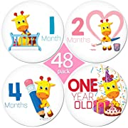 LIMITED PROMO 48 Pack of 4  Premium Baby Monthly Stickers By KiddosArt. 1 Lilly The Giraffe Sticker Per Month of Your Baby's First Year Growth, Milestones and Holidays. Month Sticker for Boy or Girl