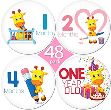 Limited promo 48 pack of 4 premium baby monthly stickers by kiddosart 1 lilly