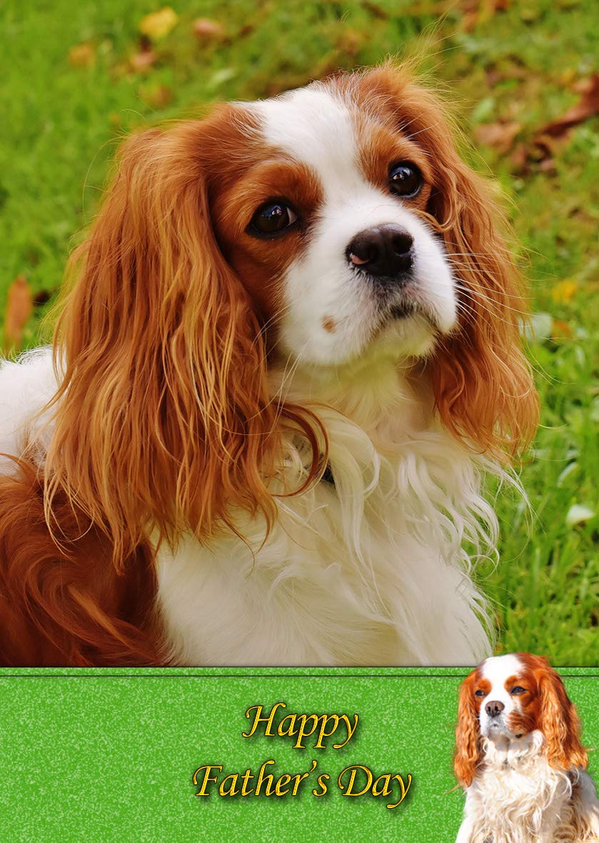 KING CHARLES TOY SPANIEL SINGLE DOG PRINT GREETING CHRISTMAS CARD