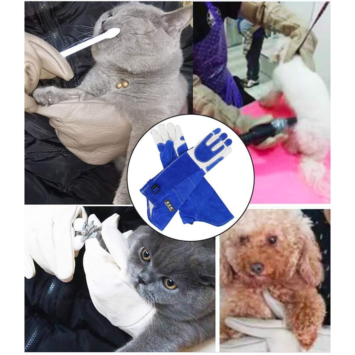 WYEA Guantes Anti-mordedura Rasgu/ño de Manipulaci/ón Animales Color : A, Tama/ño : XL Guantes Protecci/ón Seguros y Duraderos para Mordidas Perros Gato Ave Serpiente Lucky