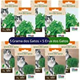 Kit Sementes de Erva e Grama para Gatos 10 pacotinhos