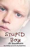 Stupid Boy (Dear Teddy A Journal Of A Boy Book 3)