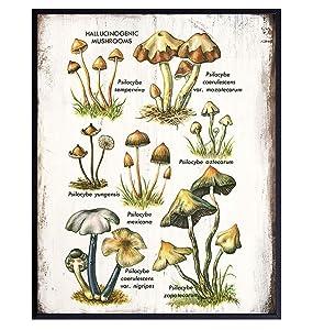 Psychedelic Hallucinogenic Medicinal Magic Mushrooms Botanical Prints Art - Psilocybin Spores Trippy Wall Decor - Men Women Gift - Vintage Retro Rustic Faux Wood Sign Plaque Poster for Kitchen, Dorm