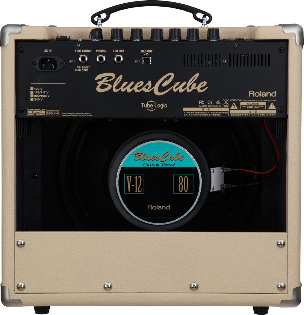 Kendte Amazon.com: Roland Blues Cube Hot 30W 1x12