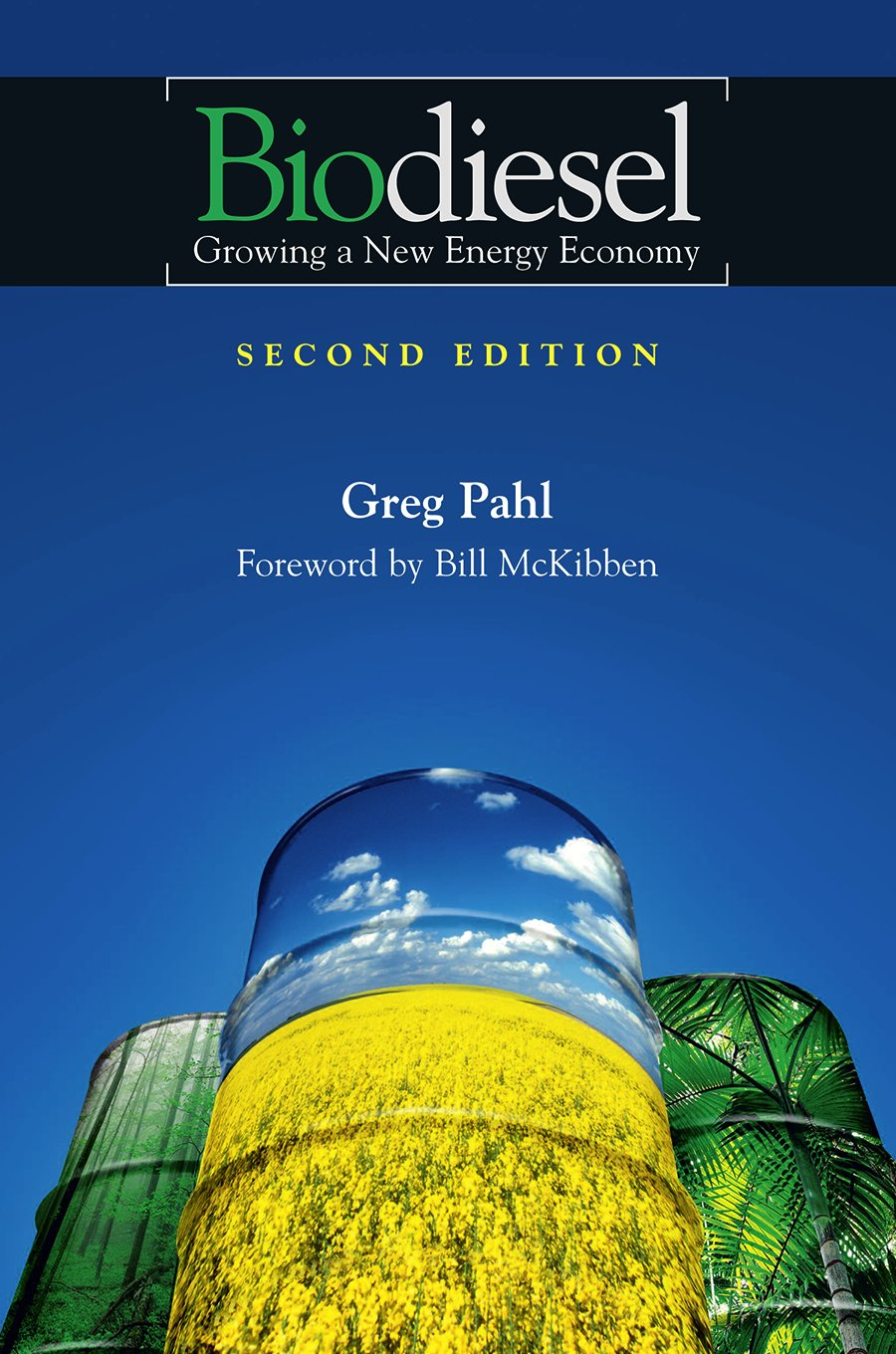 Biodiesel: Growing a New Energy Economy, 2nd Edition pdf epub