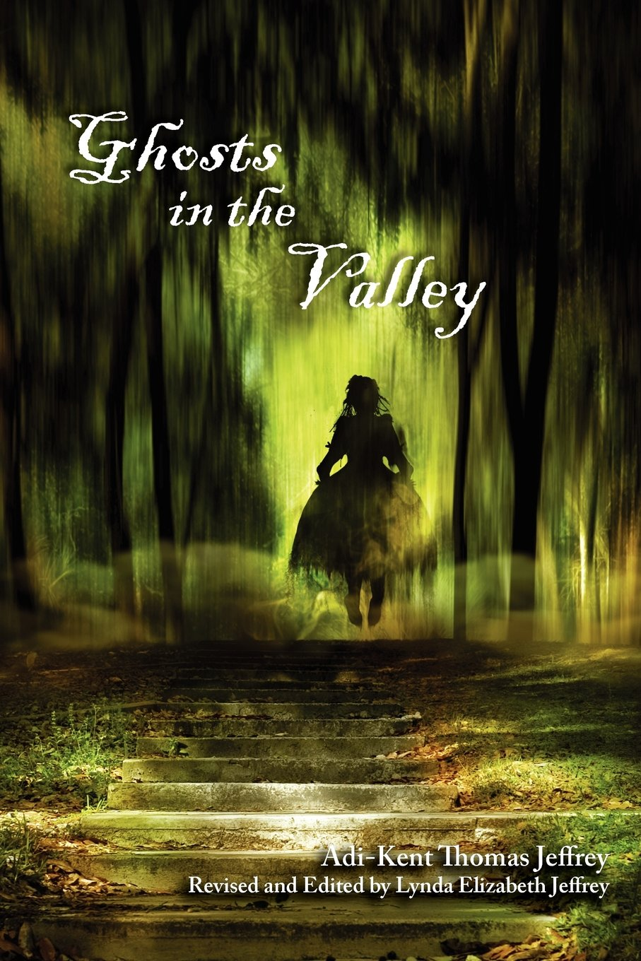Download Ghosts in the Valley pdf