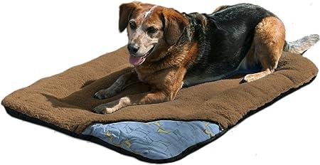 loft dog bed