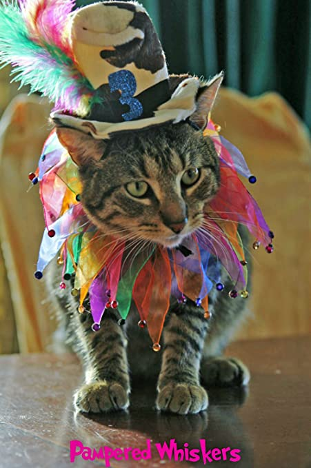 Cat Birthday Hat For