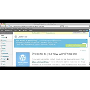 How to Embed a Set iFrame in Wordpress