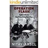 Operation Flash, Episode 3: Spring Awakening