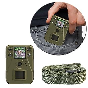 AMG Sicherheitstechnik Mino RCAM/Trampa Foto/Vídeo Trampa/Wild Cámara con 940 nm/12 Mpx/Full HD: Amazon.es: Deportes y aire libre