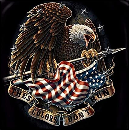 Eagle Diamond Painting Kit for Adults Animals Full Drill Rhinestone Embroidery Cross Stitch Arts Craft Christmas Home Wall Decor 11.8 X 15.7In American Soldier