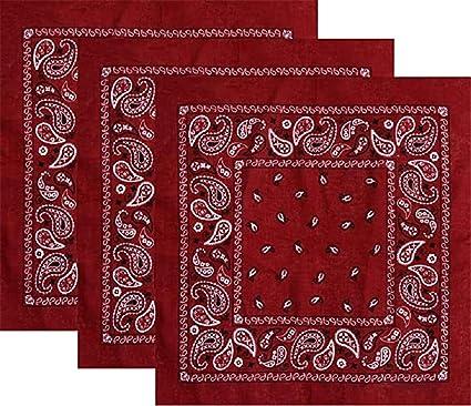 Latocos 6 Piezas Paisley Bandana Pañuelos Cabeza Pañuelos Cuello ...