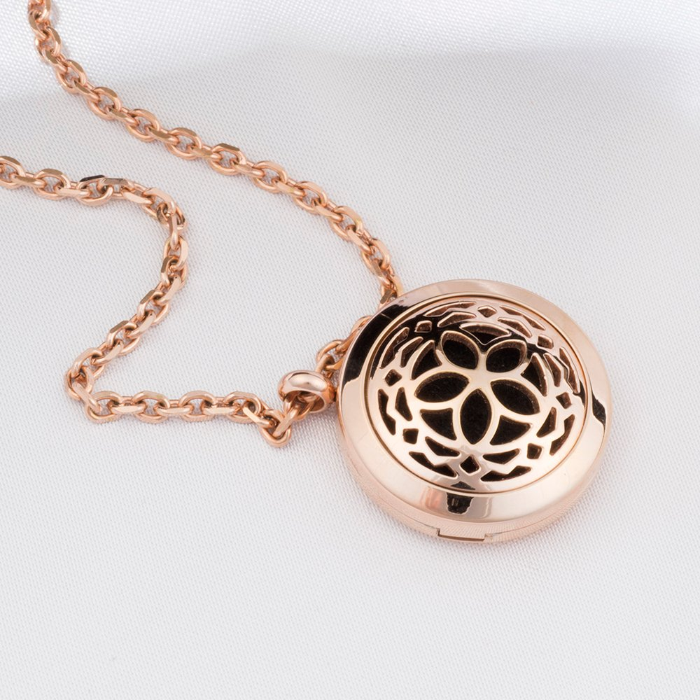 Amazon aromatherapy essential oil diffuser locket necklace aromatherapy essential oil diffuser necklace jewelry rose gold hypo allergenic 316l surgical grade aloadofball Gallery
