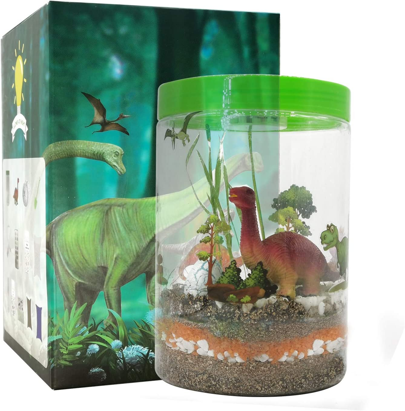 TYZEST Light-up Terrarium Kit for Kids with LED Light on Lid - Science Kits for Boys & Girls -STEM Educational DIY Science Project- Create Customized Mini Garden for Children