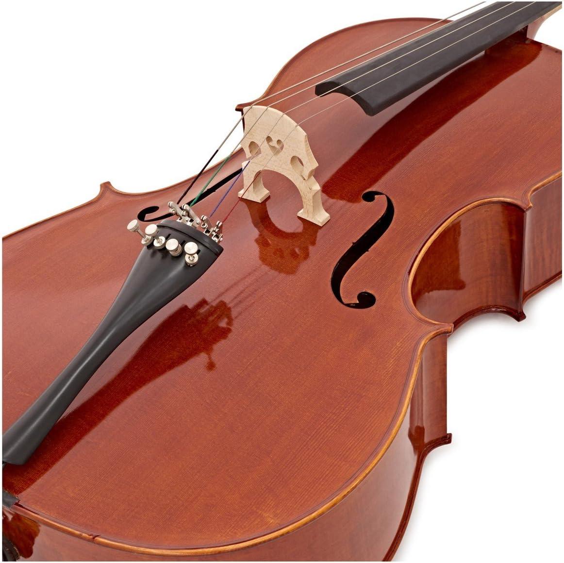 Violonchelo Archer 4/4 + Estuche de Gear4music: Amazon.es: Instrumentos musicales