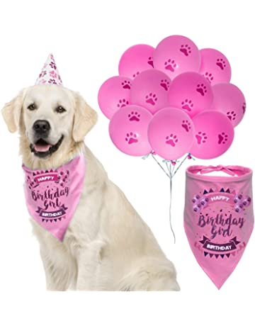62788b752bb ZOOniq Dog Birthday Girl Bandana with Paw Print Party Cone Hat and 10  Balloons - Great